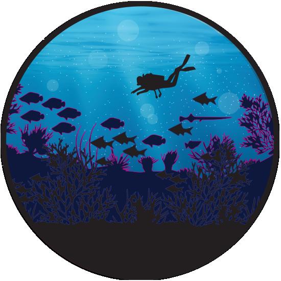 diving 12